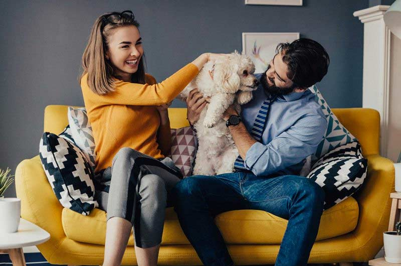 5 Reasons Why Millennials Are Adopting Pets Instead of Having Kids